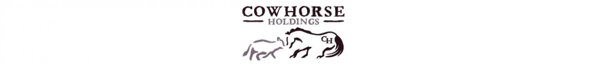 CowHorse Holdings – 5 Star 100% Wool Pad & Martin Saddlery Barrel Saddles